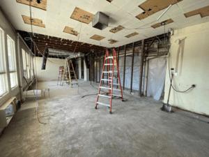 Selective Demolition in HS Guidance Suite